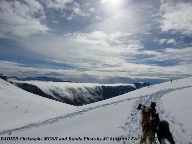 Badier Christophe Chien de traineau Vercors mer de nuage MaR JC